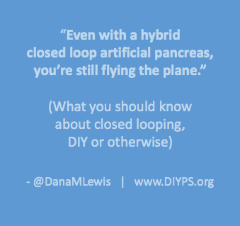 what_to_know_about_looping_danamlewis
